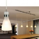 Frosted Glass Pendant With Track Adapter- Saving you �21.60