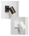 Modern Single Spotlight - White or Bronze