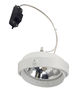 AR111 Adjustable Spotlight: 12v 75w max