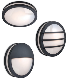 Modern Exterior Wall Light with Graphite Frame