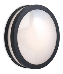 Graphite Frame Exterior Round Opal Light