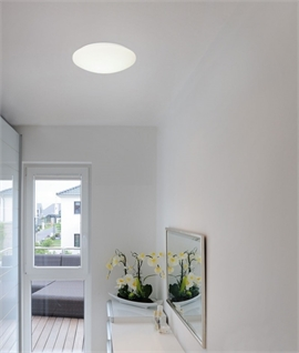 Round Wall or Ceiling Mounted Indoor Light
