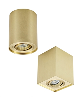 Brushed Gold Surface Mounted Adjustable Downlights