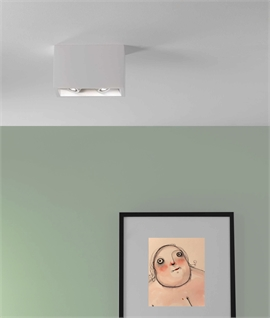 Surface-Mounted Plaster Downlight - Twin Adjustable Lamps
