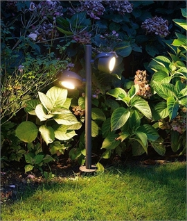 Twin Spike-Mounted Path Light - Adjustable and Uses LED Lamps