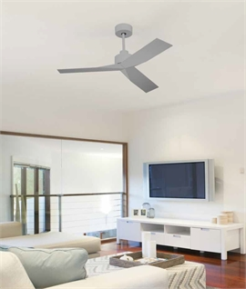 Three Blade Trendy Ceiling Fan in Matt Finishes