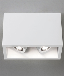 Ceiling Mounted Plaster Downlight - Twin Adjustable Lamps