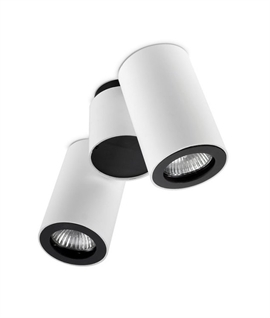 Twin Surface Mounted Spot Light - Adjustable
