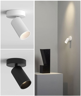 Narrow Beam LED Adjustable Single Spot - Black or White