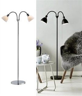Double Shaded Adjustable Arm Floor Lamp