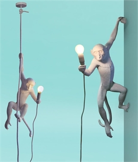 Hanging Monkey Pendant with Rope & LED Lamp