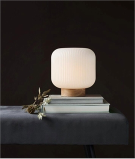 Opal Lined Glass Shade Table Lamp