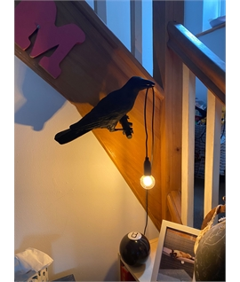Bird Wall Light - For Interior Use