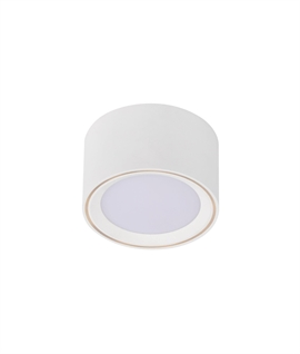 Surface Mounted Downlight - 4 Step Dimmer