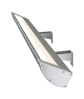 Display Floodlight for Twin 54 Watt T5 Lamps