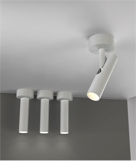 LED Wall or Ceiling Adjustable Spot Light - Two Finishes