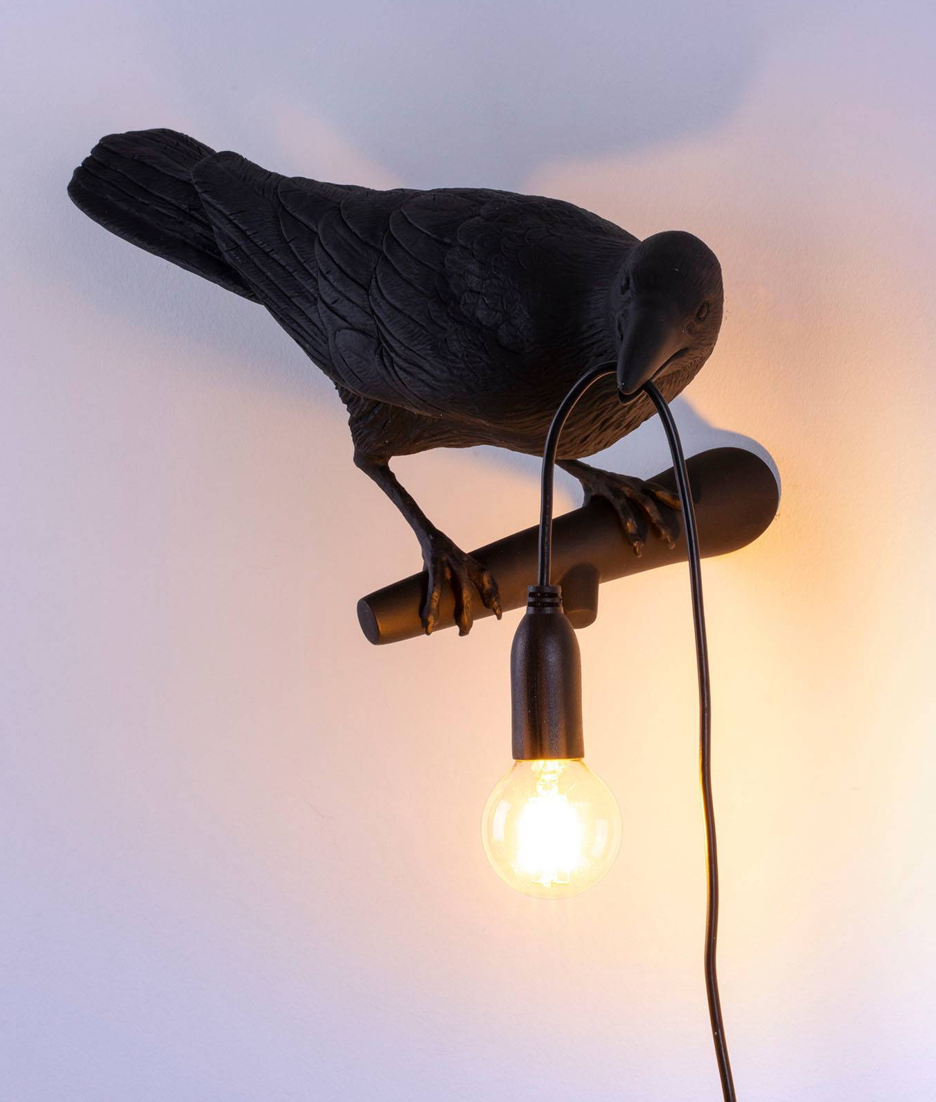 Outdoor Bird Wall Lamp By Seletti