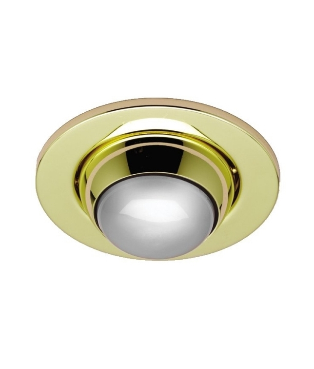 Eyeball Downlight For Use With R80 Reflector Lamp