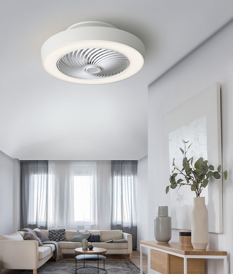 Matt White Flush Ceiling Fan With Led Light