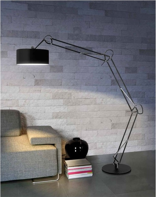 Fully Adjustable Long Reach Floor Lamp