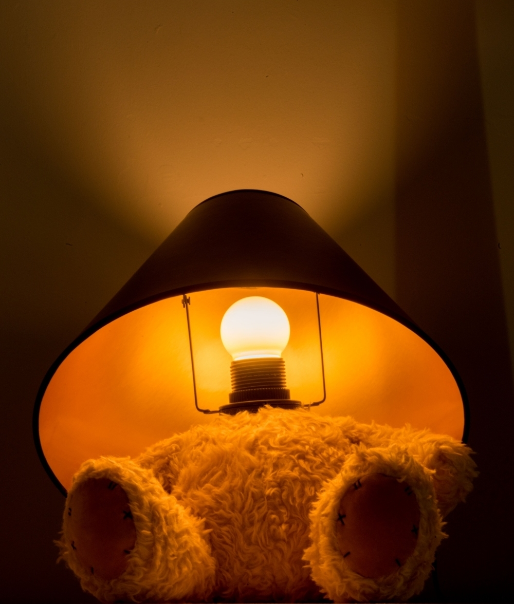 Teddy Bear Table Lamp Led Bulb And Shade