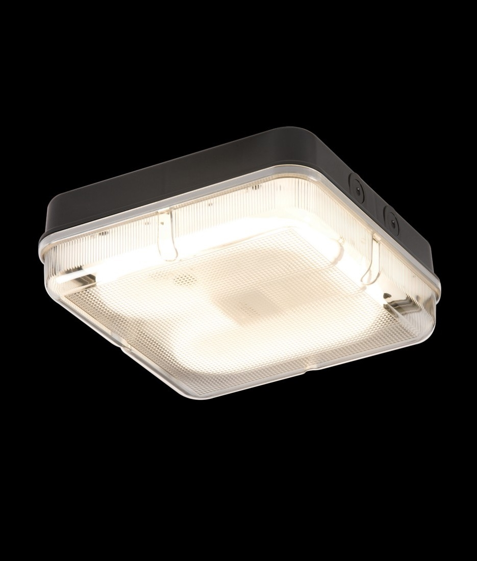 Basic Square 28w 2d Bulkhead Light Standard Or 3 Hour