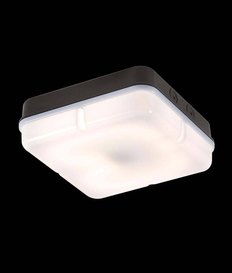 Basic Square 28w 2d Bulkhead Light Standard Or 3 Hour
