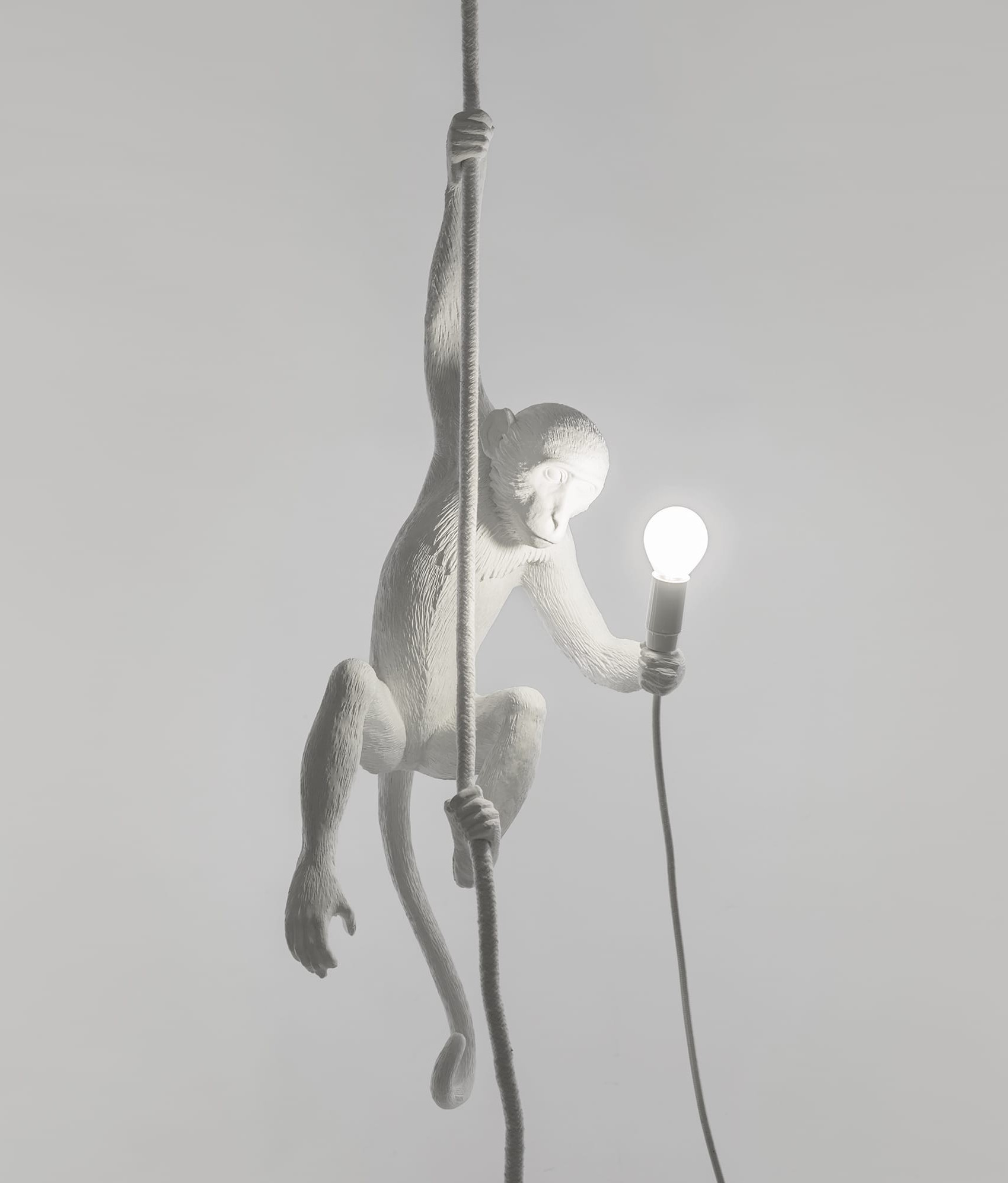 hanging monkey light supplied with led lamp