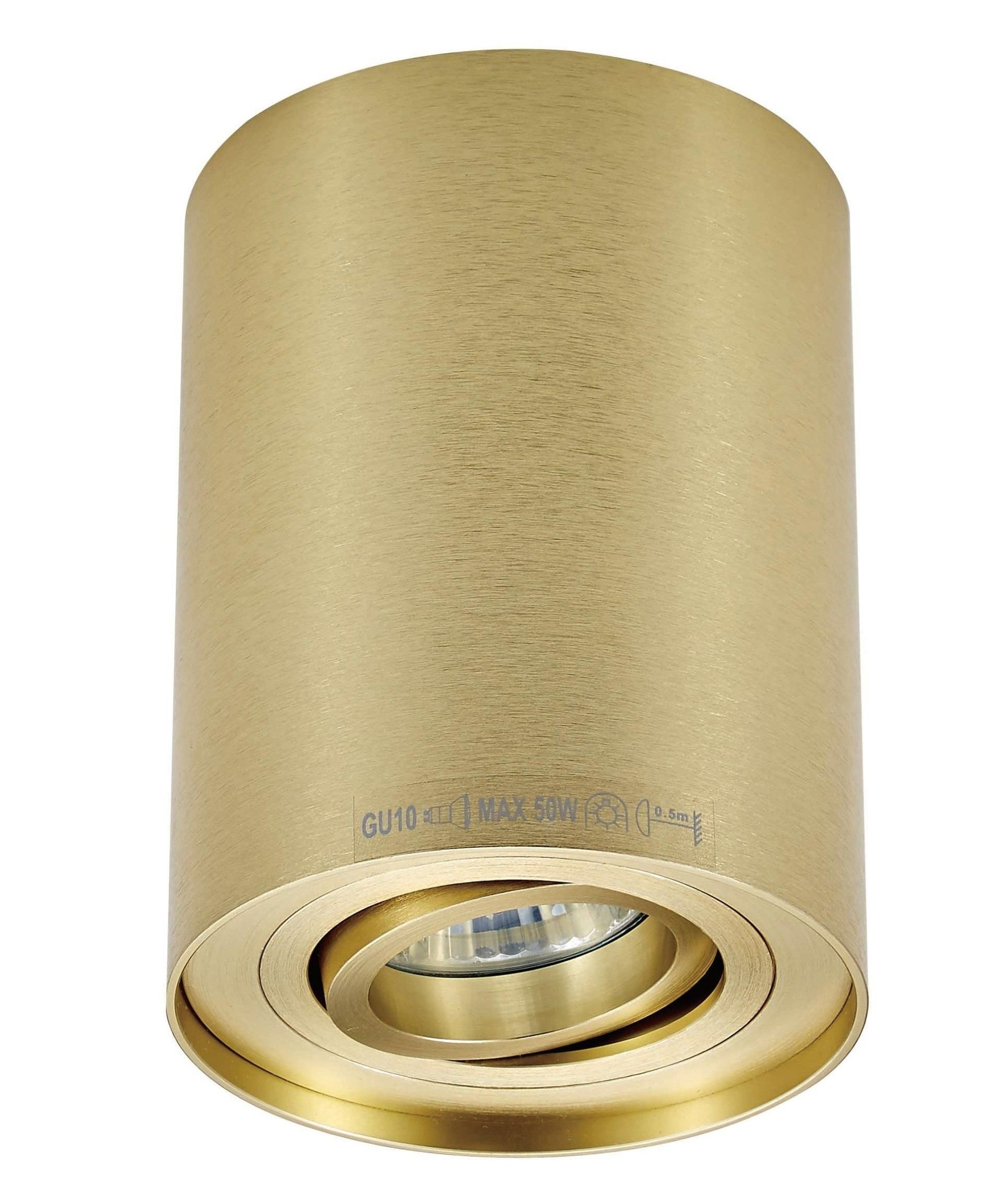 Surface Mounted Downlight Brushed Gold Finish