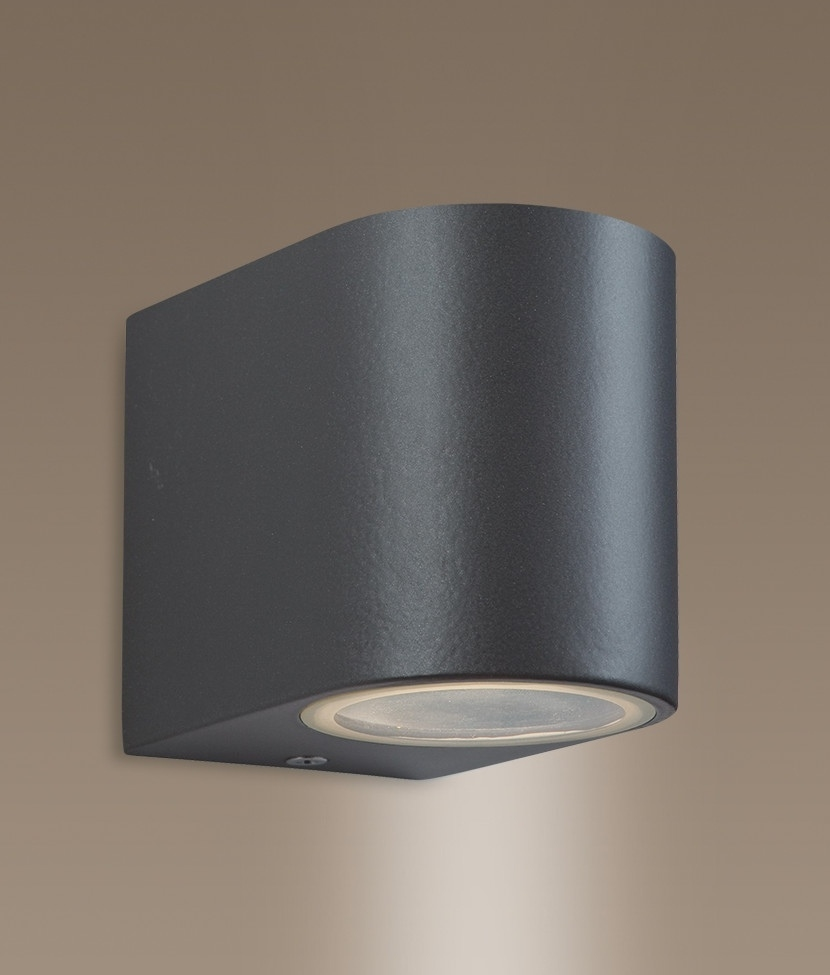 Outdoor Wall Lights Metal: Gun Metal Exterior Wall Light Either Single Or Double Lamp