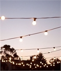 Pro Grade Traditional Festoon String Lights for 10 Bulbs